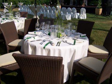 witt-Firmenevents-Sommerparty im Garten