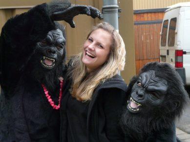 witt-spassbilder-Gorillas